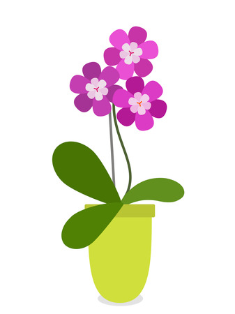 Stylized Blooming beautiful purple orchid in a pot. black and white background