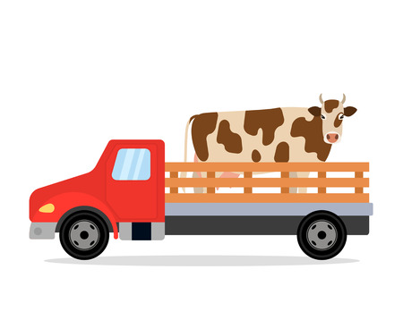 A farm truck carries a cow. black and white background