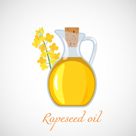 A glass jug with rapeseed oil on the background of a flowering canola. Flat vector illustration isolated on white background.