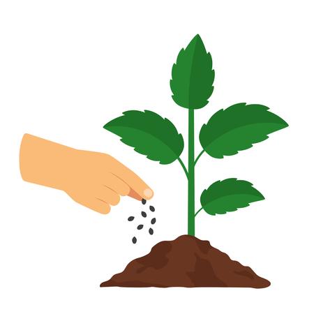 Die menschliche Hand legt Dünger auf die Pflanze. Das Konzept der Landwirtschaft. Schwarzweiss-Hintergrund Vektorgrafik