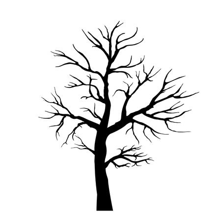 Sagoma nera di un albero senza foglie. sfondo bianco e nero