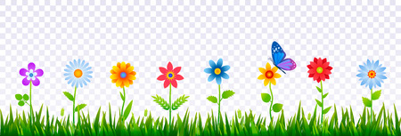 Bright border of green grass with spring flowers. Template for decorating Easter cards, posters, banners. Realistic vector illustration on transparent background