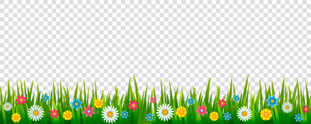 Bright realistic pattern of green grass and spring flowers for decorating Easter cards, banner. vector icon isolated in a frame on a transparent background