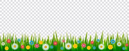 Patrón realista brillante de hierba verde y flores de primavera para decorar tarjetas de Pascua, banner. icono de vector aislado en un marco sobre un fondo transparente