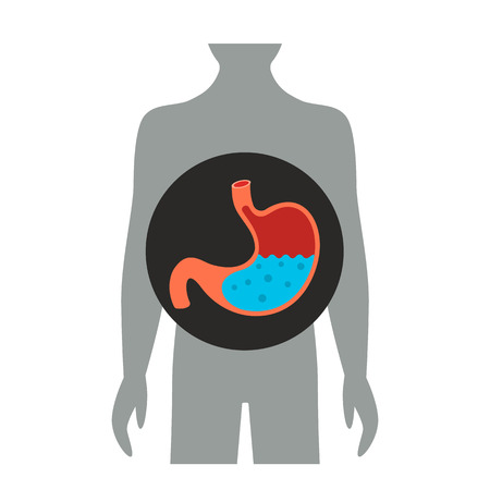 Full stomach of water and bubbles. flat vector illustration isolated on white background Ilustracja