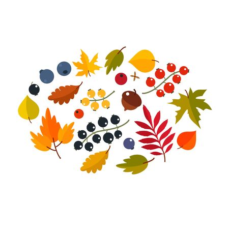 Autumn set of maple leaves, berries, acorns. Thanksgiving concept. flat vector illustration isolated on white background Иллюстрация