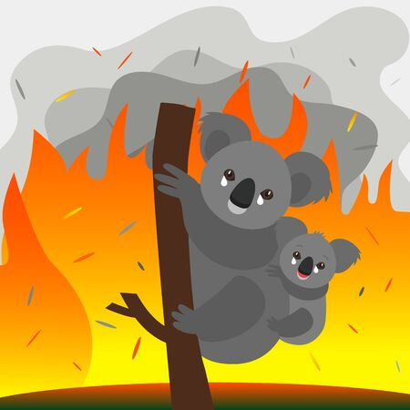 Global catastrophe fire in the forests of Australia. The unfortunate koala is afraid of fire and cries. Pray for Australia. vector illustration Иллюстрация