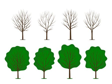 A large set of abstract stylistic trees with green leaves and bare branches. different seasons in the garden. flat vector illustration isolated on white background Иллюстрация
