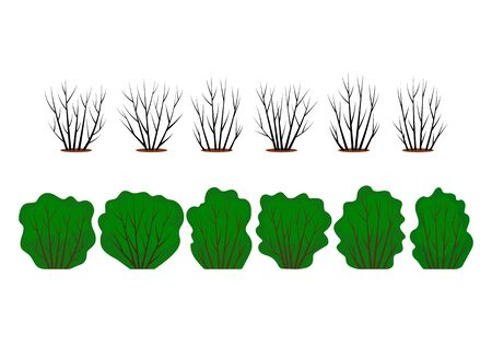 A large set of abstract stylistic bushes with green leaves and bare branches. different seasons in the garden. flat vector illustration isolated on white background