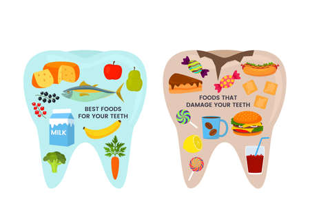 healthy and bad tooth. good and bad food. fish, vegetables, fruits, milk or hot dog, hamburger, candy, cakes, soda and coffee. vector illustration