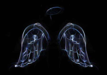 angels wings: the two wings of angels, and a halo of smoke on a black background