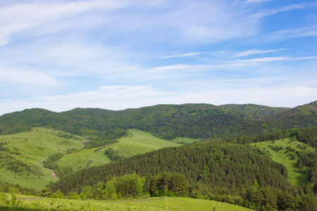 greenwood: Natural background. Beautiful summer mountain landscape Stock Photo