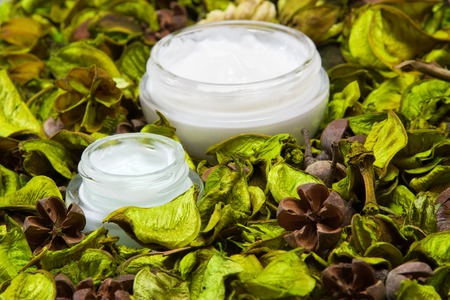 Organic skin care products. Closeup of two open jars filled with cream in dry green leaves. Natural cosmetics for women. Side view. Shallow depth of field Banque d'images