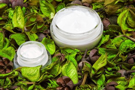Organic skin care products. Closeup of two open glass jars filled with cream surrounded by dry green leaves. Natural cosmetics for women