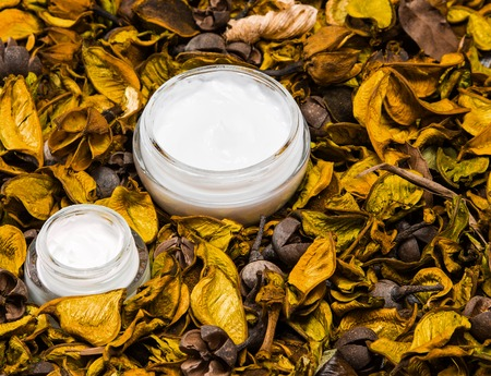 Organic skin care products. Closeup of two open glass jars filled with cream surrounded by dry yellowish orange leaves and parts of plants. Natural cosmetics for women