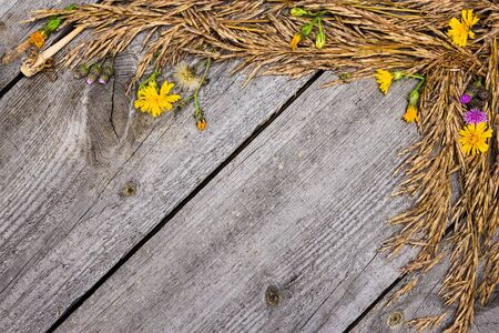 Autumn frame of dried grass and flowers on old wooden planks Banque d'images