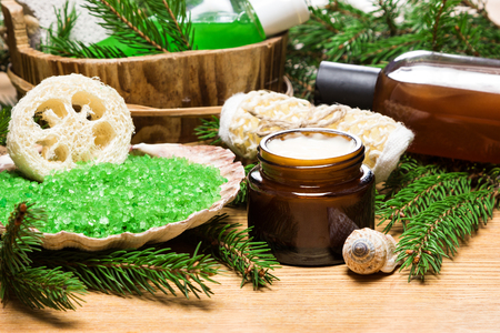Spa and pampering products and accessories: sea salt in shell, loofah, wisp of bast, skin care cream, shampoo and shower gel with pumice in wooden basket surrounded by fir branches