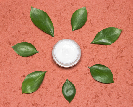 Skin care product with natural UV filters. Jar of day face cream surrounded by plant leaves like sun rays. Organic sunscreen