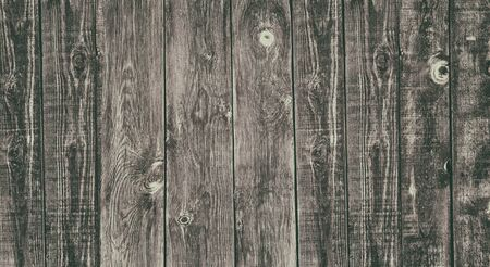 Old rough uneven wooden board widescreen retro style texture. Knotty weathered natural solid wood faded rustic background Фото со стока - 132769287
