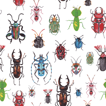 stag beetle: seamless pattern with beetles on a white background