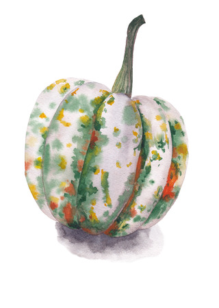 Pumpkin unusual coloring on a white background. Watercolor illustration. Stock Photo