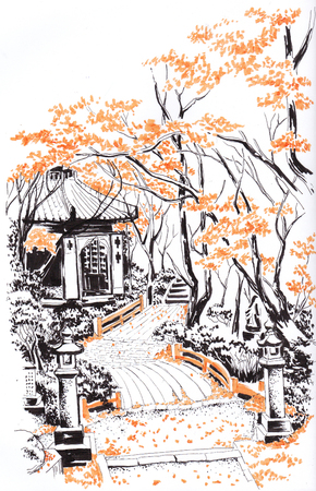 Autumn alleys of the Japanese garden. Sketch.