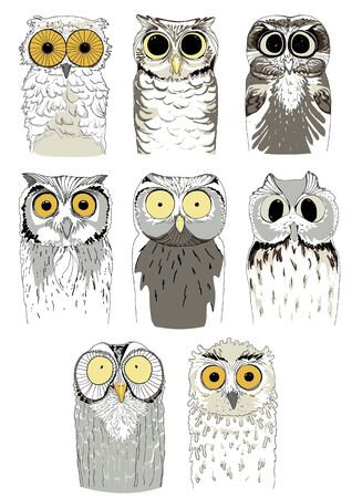 Set of different owls. Cute and funny hand drawn owls. Vector birds on a white background. Ilustração