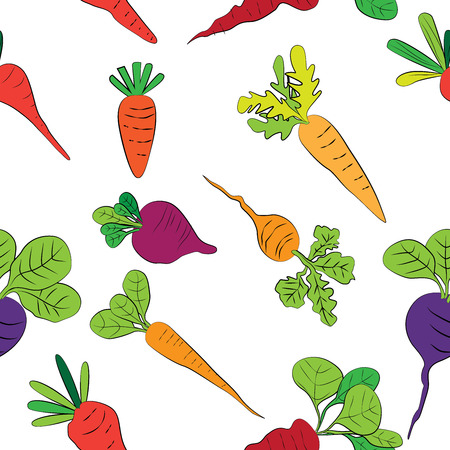 patter: Carrot and Vegetable Patter Vector