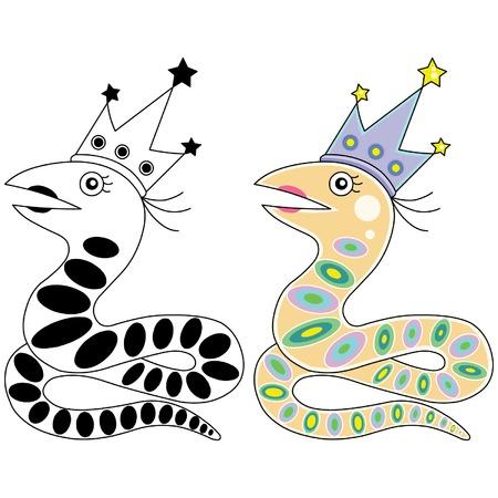boa constrictor: Snake