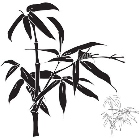 Bambù silhouette