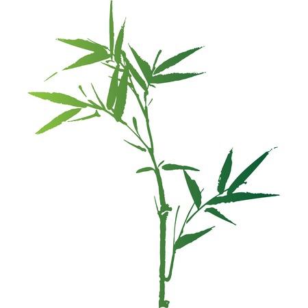 Bamboo silhouette Vector
