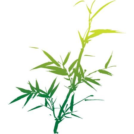 Silueta de bambú