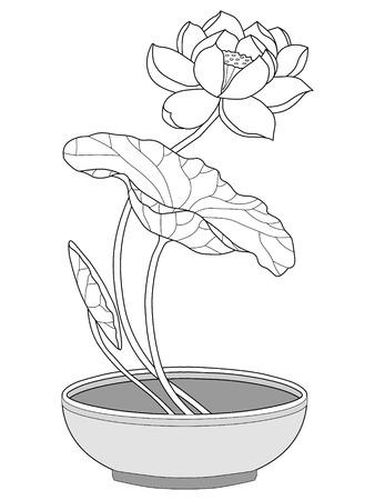 lotus leaf: lotus silhouette Illustration