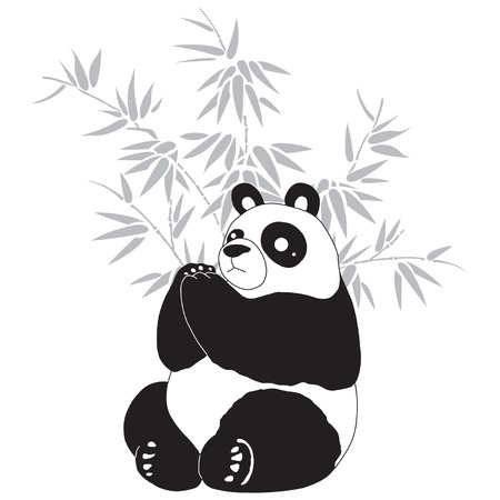 Panda and bamboo silhouettes. Illustration