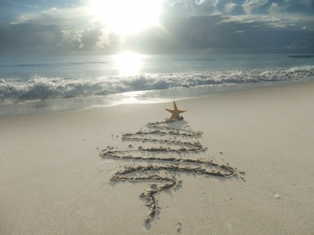 Christmas tree drawn in sand at the beach  Holiday concept