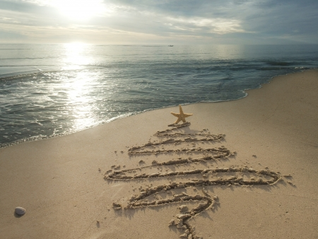 christmas concept: Christmas tree drawn in sand at the beach. Holiday concept.