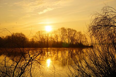 A wonderful Golden sunrise over the river with trees in spring. 免版税图像