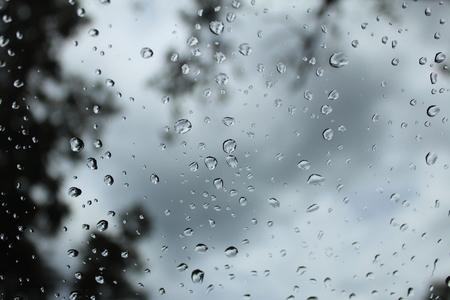 kropla deszczu: Raindrop falling on the windows