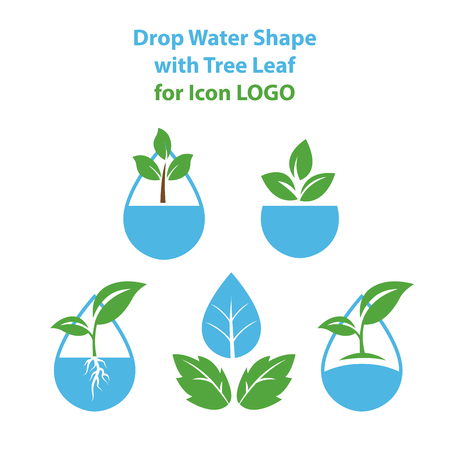 Drop water shape with tree leaf, Hydroponics icon LOGO Concept, flat design vector isolated white background. Logo
