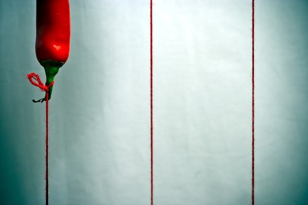 pepper flies like a balloon on a string Standard-Bild