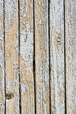 old background of  weathered white painted wood Stock Photo - 8604848