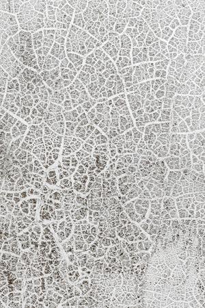 グランジ ホワイト バック グラウンド セメント古いテクスチャ壁