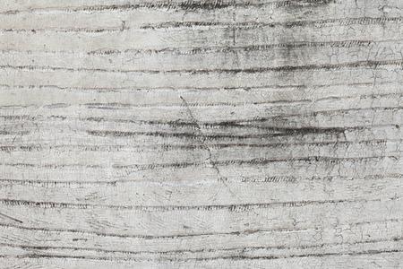 stucco facade: Grungy White Concrete Wall Background