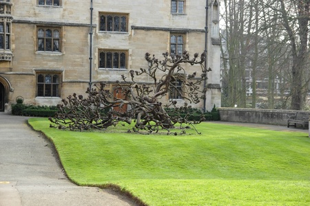 King�s College with crooked tree, Cambridge, United Kingdom photo