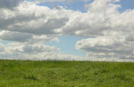 remoteness: Green meadow in spring