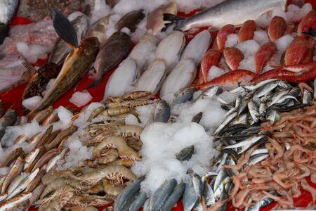 barbel: Fish Market