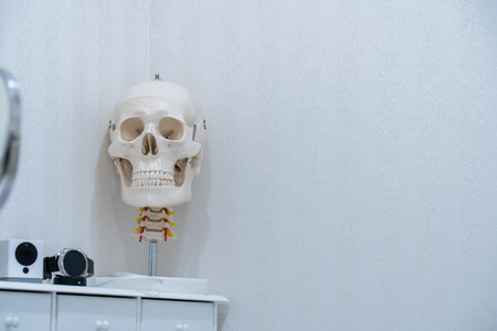 skull model in Examination room,doctor room equipment concept. Stock Photo