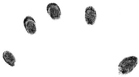 5 fingerprints  Reklamní fotografie