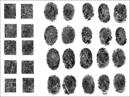 30 Detailed Fingerprints Vettoriali