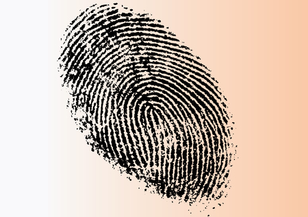Black and White Vector Fingerprint - Very accurately scanned and traced ( Vector is transparent so it can be overlaid on other images, vectors etc.) Banco de Imagens - 39423748